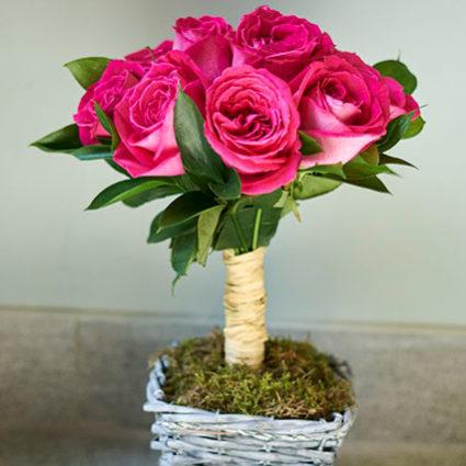 Деревья из роз
