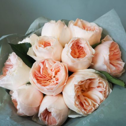 Романтический английский сад. 11 роз сорта Juliet от Дэвид Остин