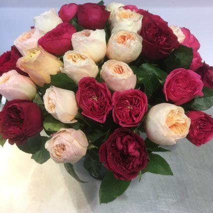 Букет 31 роз Cадовая Колумбия