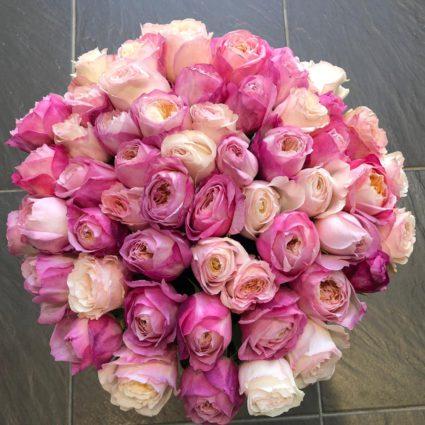 Букет 55 ароматные розы Constance Keira от Дэвид Остин