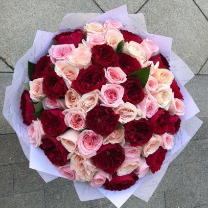 65 прекрасных садовых роз, удивите Ваших близких.