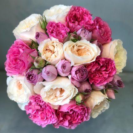 21 ароматная яркая садовая роза создаст прекрасное настроение