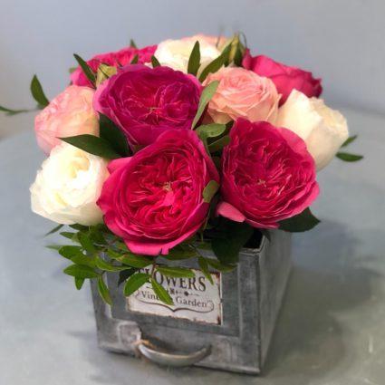 11 садовых роз в интересном исполнении