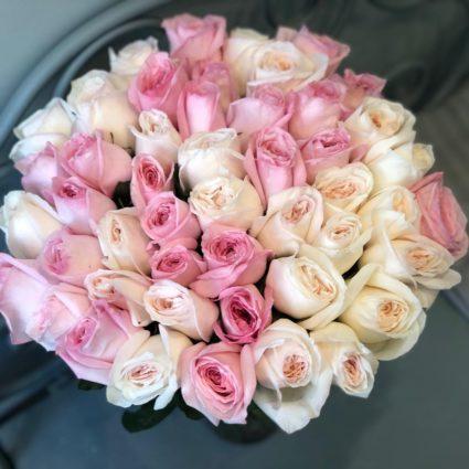 49 роз сорта «O'Hara»